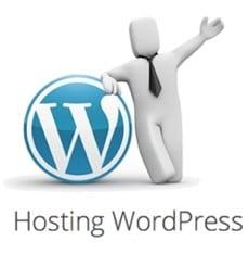 Wordpress de Webempresa