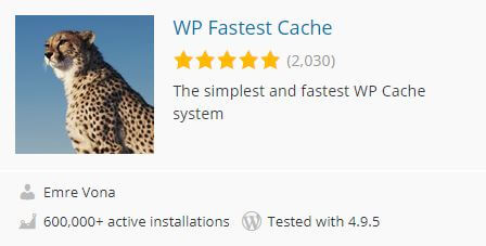 WP Fastes cache