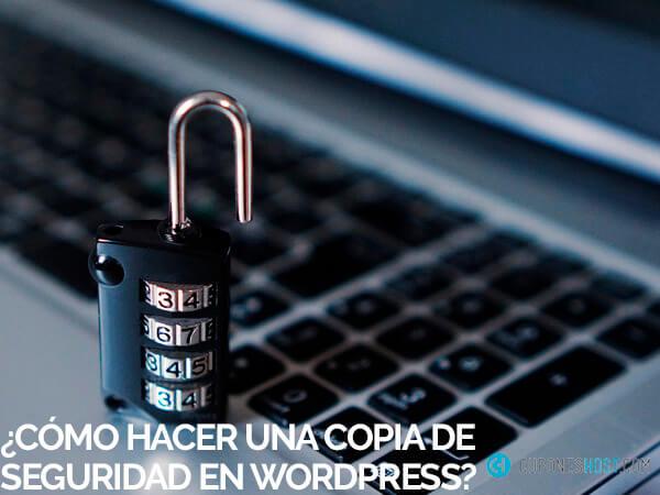 hacer copia seguridad